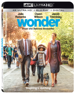 Wonder_4K_3D